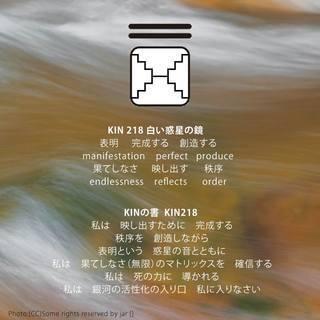 kin218.jpg