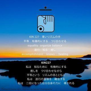 kin227.jpg